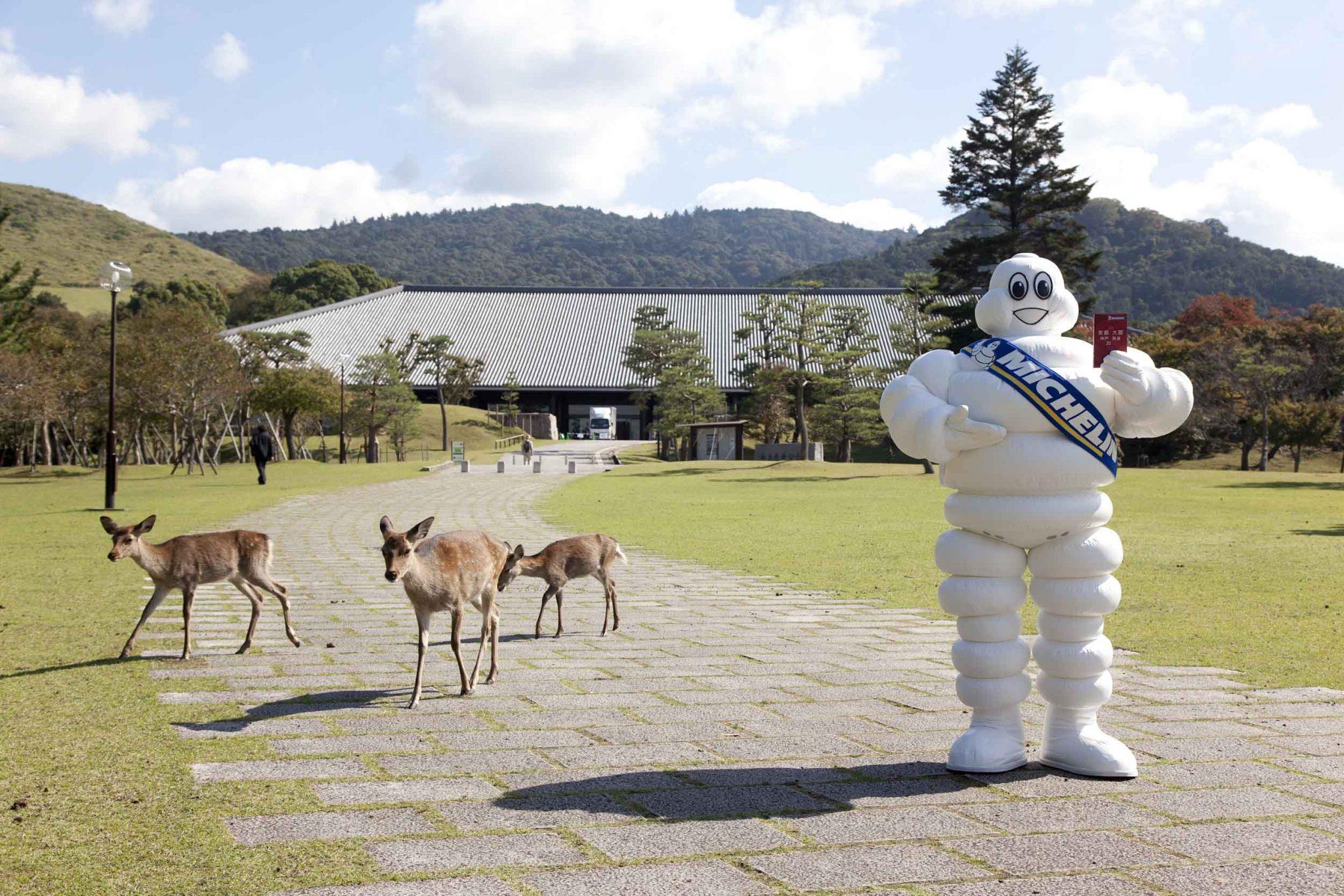 奈良の鹿とミシュランマン(奈良県新公会堂前)