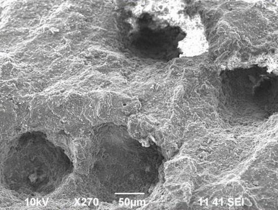 表面再生ゴムの顕微鏡画像